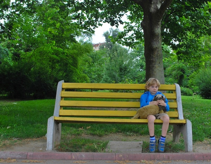 wills guardianship documents family life bench
